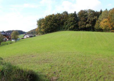 Baugrund mit angrenzender Wiese in Eggelsberg